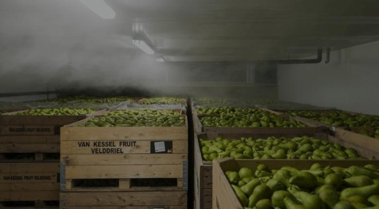 indústria frio alimentar